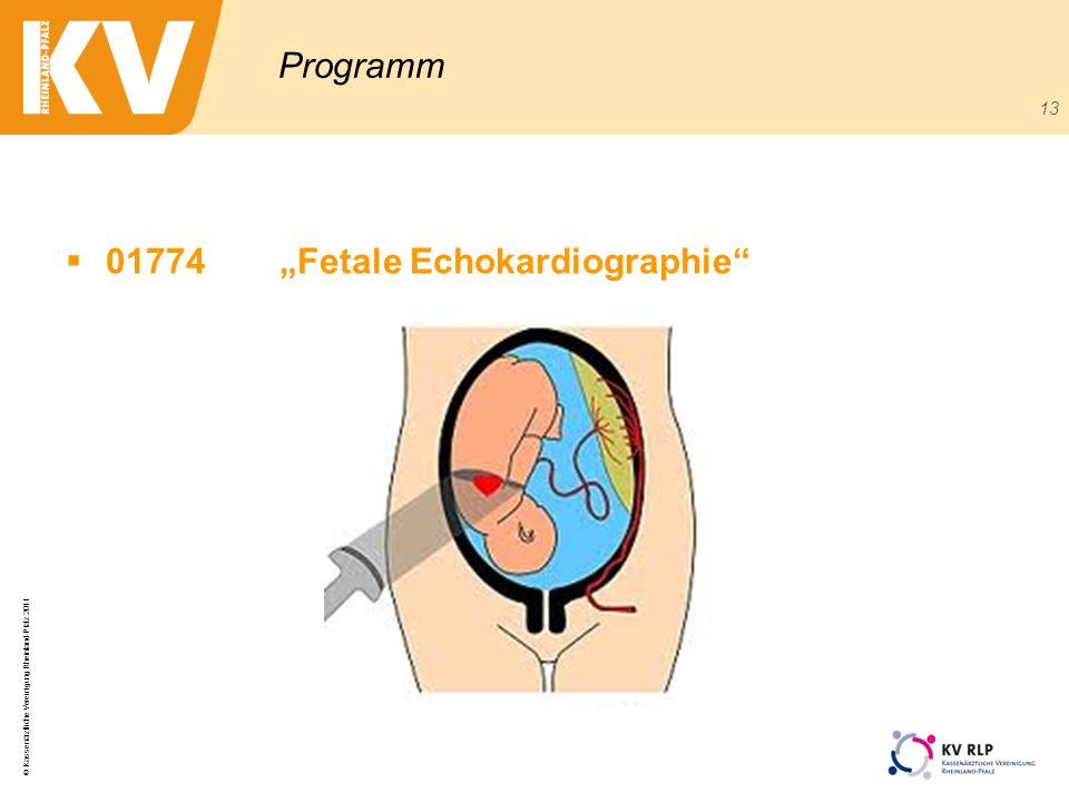 © Kassenärztliche Vereinigung Rheinland-Pfalz 2011 13 Programm 01774Fetale Echokardiographie