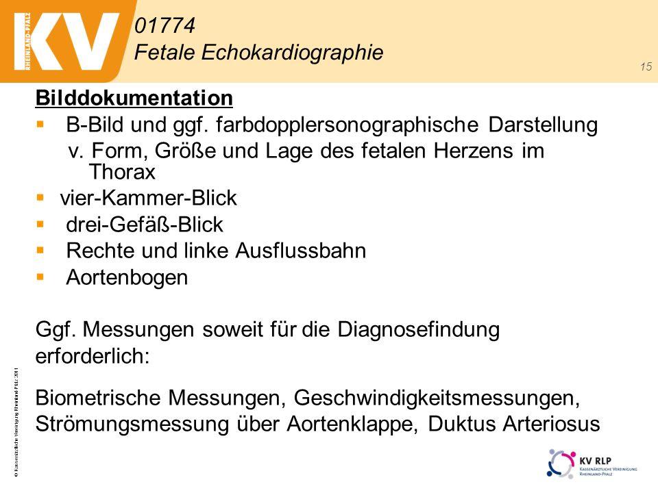 © Kassenärztliche Vereinigung Rheinland-Pfalz 2011 15 Bilddokumentation B-Bild und ggf. farbdopplersonographische Darstellung v. Form, Größe und Lage