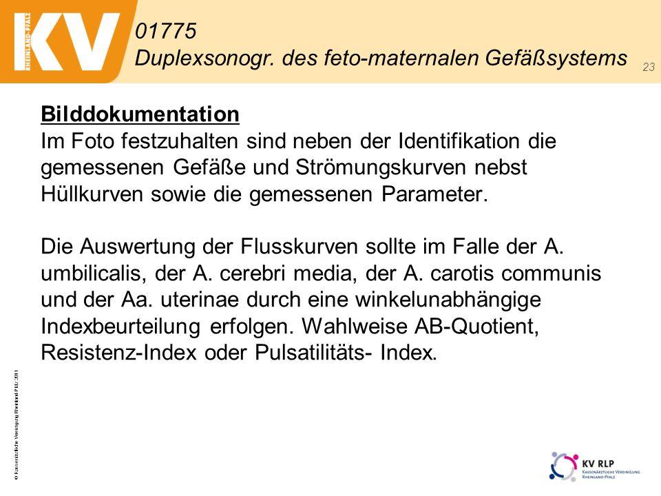 © Kassenärztliche Vereinigung Rheinland-Pfalz 2011 23 Bilddokumentation Im Foto festzuhalten sind neben der Identifikation die gemessenen Gefäße und S