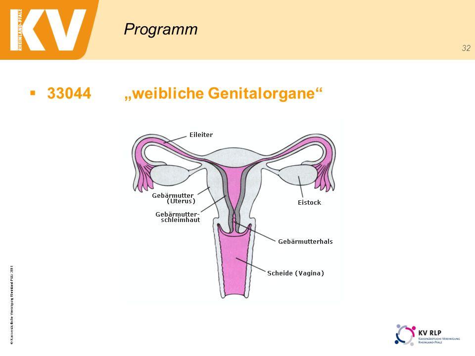 © Kassenärztliche Vereinigung Rheinland-Pfalz 2011 32 Programm 33044weibliche Genitalorgane