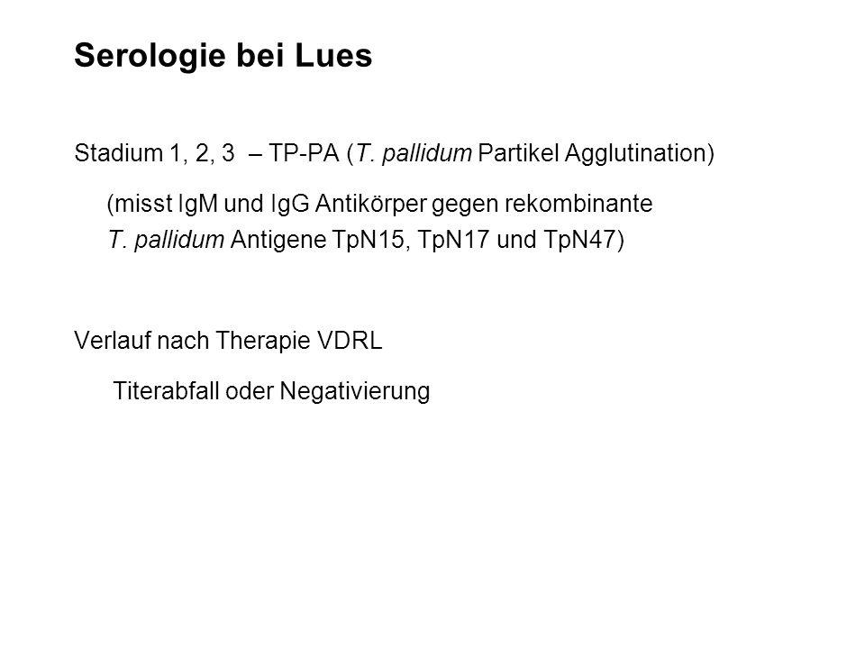 Serologie bei Lues Stadium 1, 2, 3 – TP-PA (T. pallidum Partikel Agglutination) (misst IgM und IgG Antikörper gegen rekombinante T. pallidum Antigene