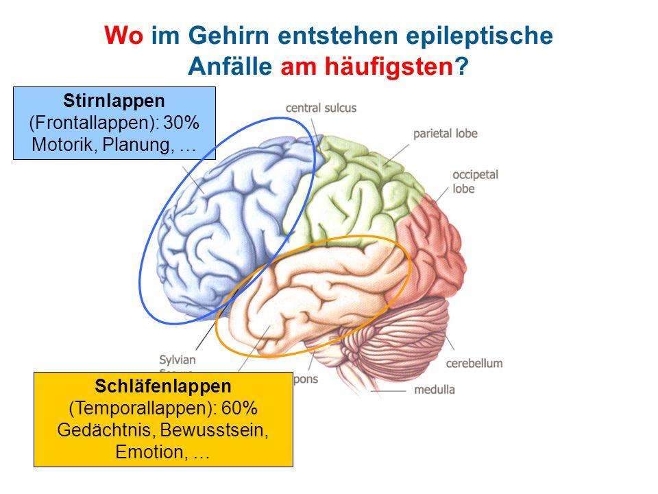 Wo im Gehirn entstehen epileptische Anfälle am häufigsten? Schläfenlappen (Temporallappen): 60% Gedächtnis, Bewusstsein, Emotion, … Stirnlappen (Front