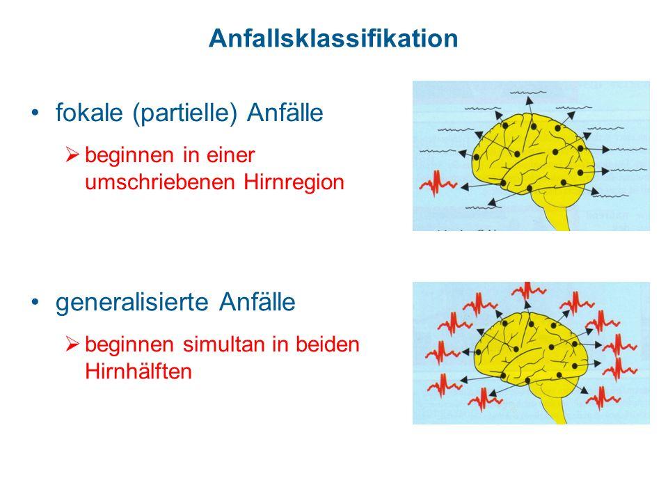 Anfallsklassifikation generalisierte Anfälle beginnen simultan in beiden Hirnhälften fokale (partielle) Anfälle beginnen in einer umschriebenen Hirnre