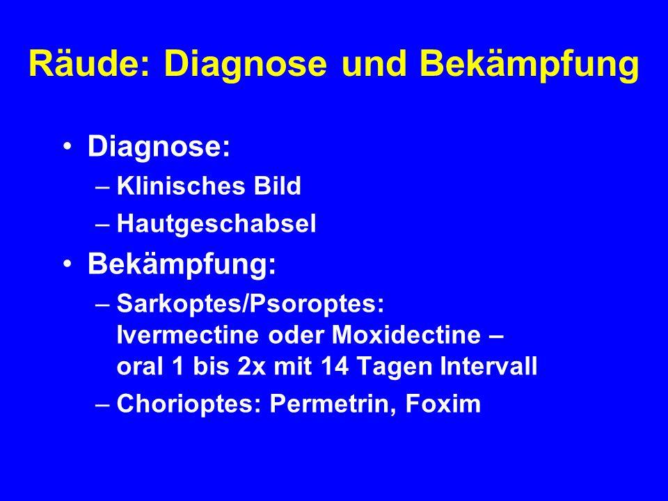 Räude: Diagnose und Bekämpfung Diagnose: –Klinisches Bild –Hautgeschabsel Bekämpfung: –Sarkoptes/Psoroptes: Ivermectine oder Moxidectine – oral 1 bis 2x mit 14 Tagen Intervall –Chorioptes: Permetrin, Foxim