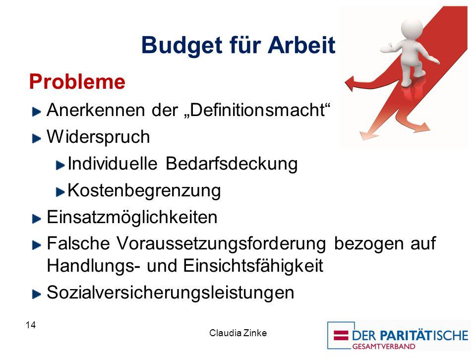Budget für Arbeit Probleme Anerkennen der Definitionsmacht Widerspruch Individuelle Bedarfsdeckung Kostenbegrenzung Einsatzmöglichkeiten Falsche Vorau