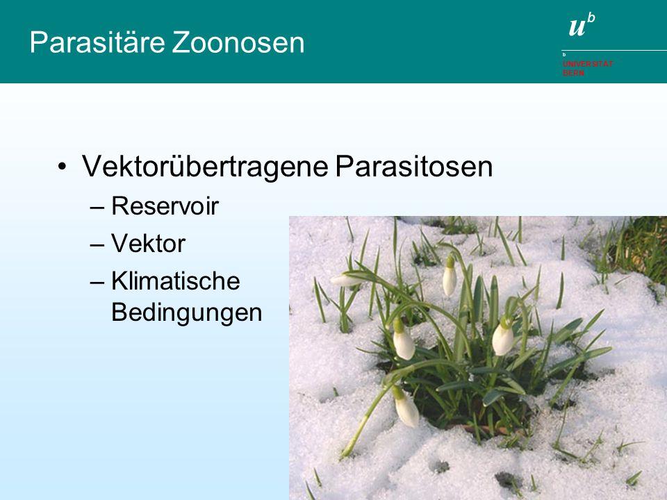 ubub b UNIVERSITÄT BERN Parasitäre Zoonosen Vektorübertragene Parasitosen –Reservoir –Vektor –Klimatische Bedingungen