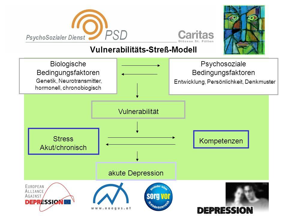 Psychosoziale Bedingungsfaktoren Entwicklung, Persönlichkeit, Denkmuster Vulnerabilität Stress Akut/chronisch akute Depression Kompetenzen Biologische