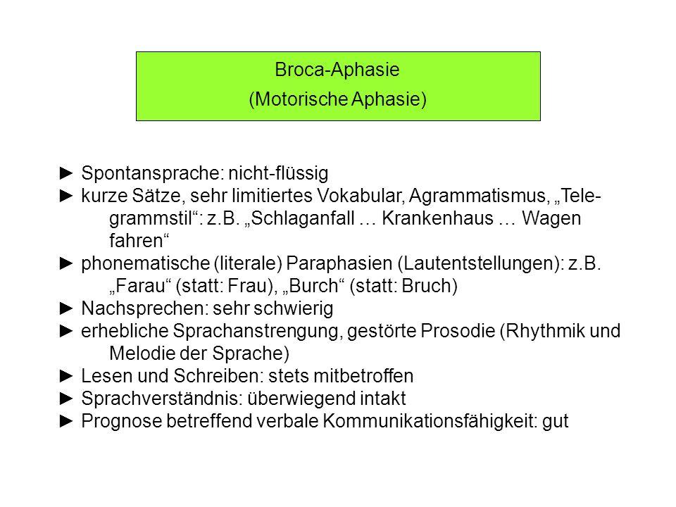 Wernicke-Aphasie (Sensorische Aphasie) (1) Spontansprache: flüssig die Patienten sprechen viel, Logorrhoe (ungehemmte Sprach- produktion), die Inhalte sind aber unverständlich Satzbau: Satzverschränkungen, ausgeprägte Störungen der Satzbildung, Paragrammatismus: z.B.