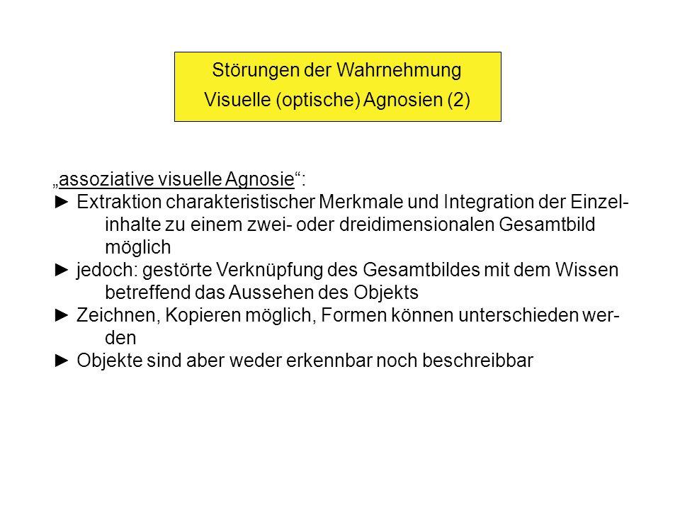 Visuelle (optische) Agnosien Subtypen apperzeptiver Agnosien (1) Visuelle Objektagnosien: an sich bekannte Objekte können durch Betrachten nicht erkannt, benannt oder verwendet werden Identifikation des Objekts erst durch Betasten bzw.