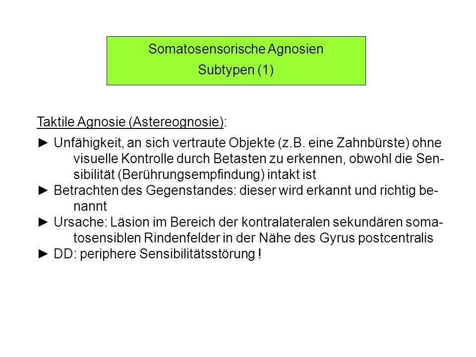 Somatosensorische Agnosien Subtypen (1) Taktile Agnosie (Astereognosie): Unfähigkeit, an sich vertraute Objekte (z.B. eine Zahnbürste) ohne visuelle K