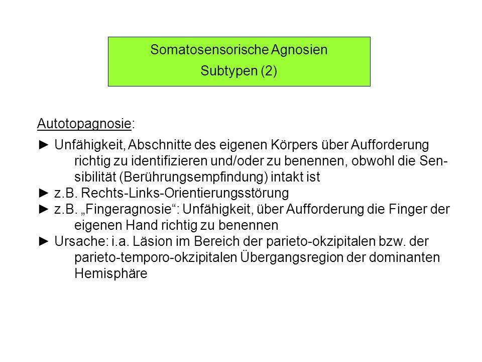 Somatosensorische Agnosien Subtypen (2) Autotopagnosie: Unfähigkeit, Abschnitte des eigenen Körpers über Aufforderung richtig zu identifizieren und/od