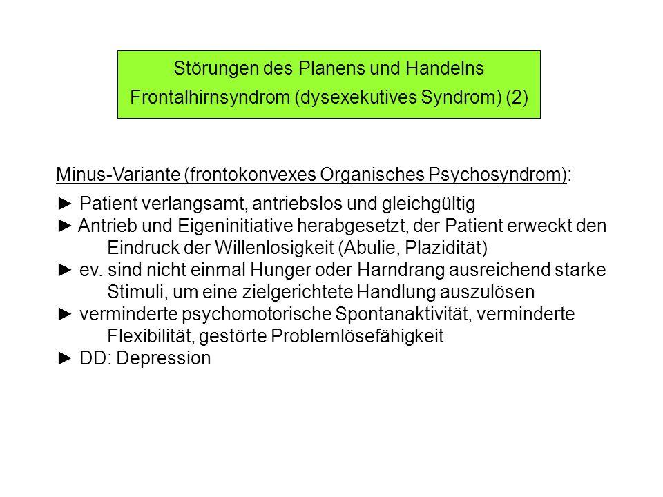 Störungen des Planens und Handelns Frontalhirnsyndrom (dysexekutives Syndrom) (3) Plus-Variante (frontobasales Organisches Psychosyndrom): Patient unkontrolliert psychomotorisch aktiv verminderte Impulskontrolle, ev.