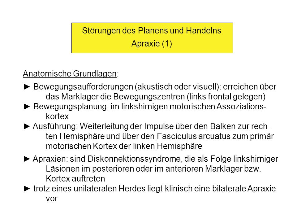Störungen des Planens und Handelns Apraxie (1) Anatomische Grundlagen: Bewegungsaufforderungen (akustisch oder visuell): erreichen über das Marklager