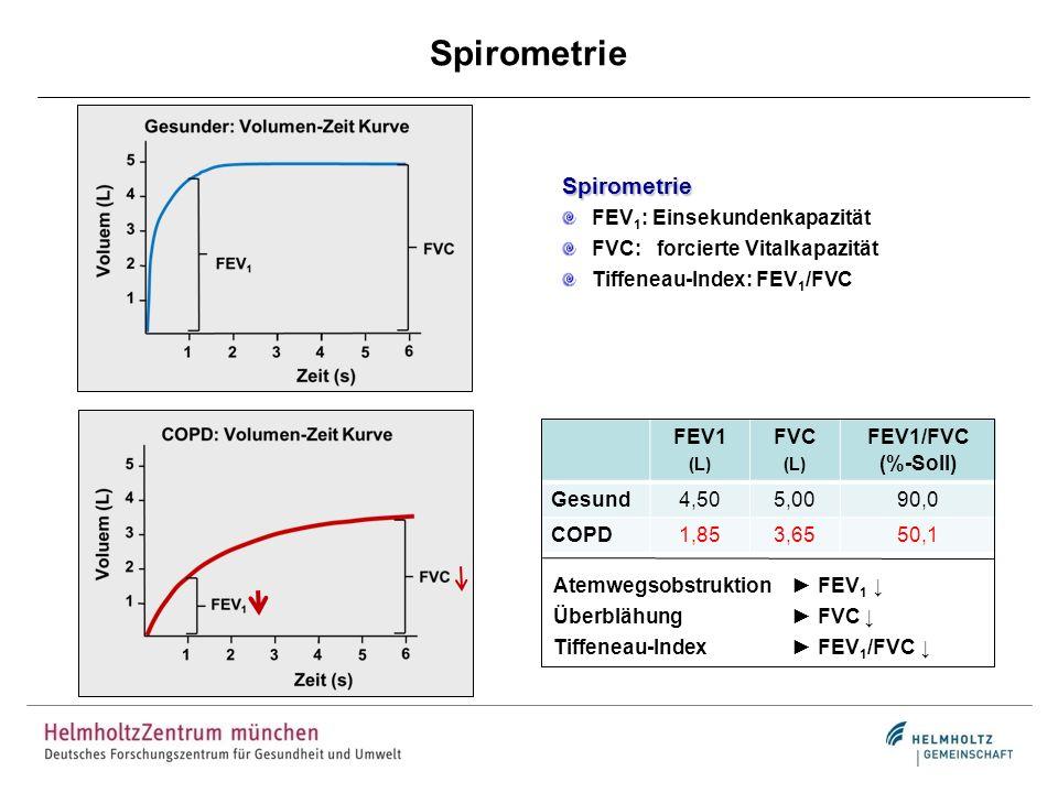 Spirometrie Spirometrie FEV 1 : Einsekundenkapazität FVC: forcierte Vitalkapazität Tiffeneau-Index: FEV 1 /FVC FEV1 (L) FVC (L) FEV1/FVC (%-Soll) Gesu