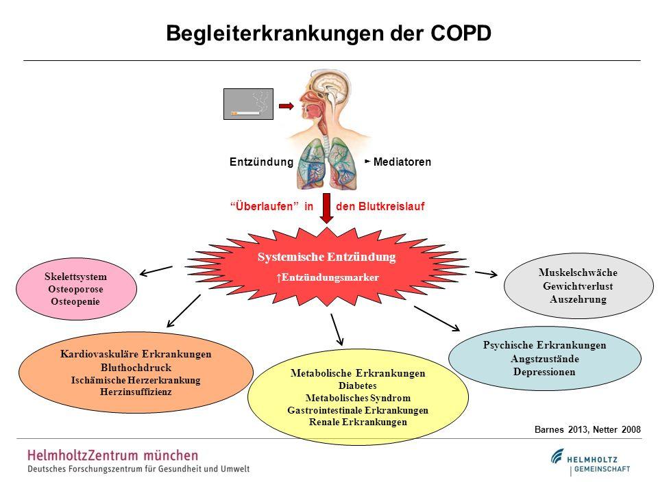 Begleiterkrankungen der COPD Barnes 2013, Netter 2008 Entzündung Mediatoren Überlaufen in den Blutkreislauf Systemische Entzündung Entzündungsmarker S