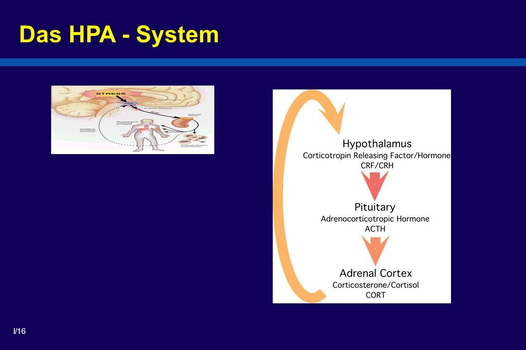 I/16 Das HPA - System