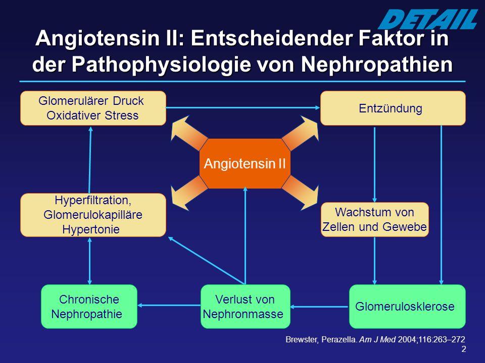 2 Angiotensin II Brewster, Perazella. Am J Med 2004;116:263–272 Glomerulosklerose Hyperfiltration, Glomerulokapilläre Hypertonie Glomerulärer Druck Ox