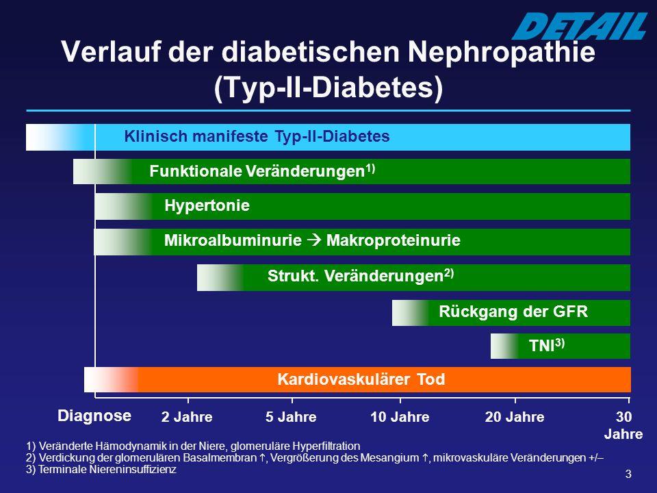 3 Verlauf der diabetischen Nephropathie (Typ-II-Diabetes) Klinisch manifeste Typ-II-Diabetes Diagnose Funktionale Veränderungen 1) Strukt. Veränderung