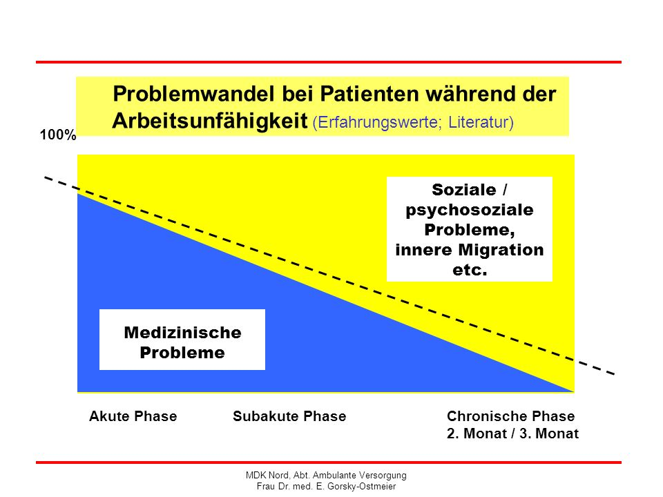100% Akute PhaseSubakute Phase Chronische Phase 2. Monat / 3. Monat Soziale / psychosoziale Probleme, innere Migration etc. Medizinische Probleme Prob