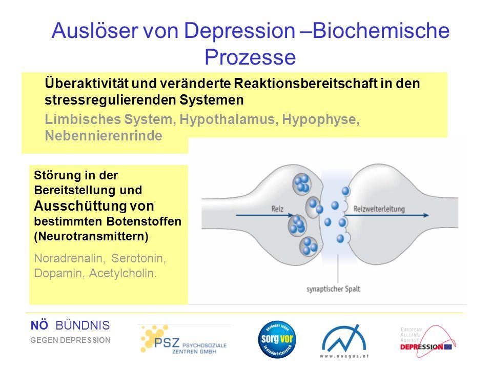 NÖ BÜNDNIS GEGEN DEPRESSION Auslöser von Depression –Biochemische Prozesse Überaktivität und veränderte Reaktionsbereitschaft in den stressregulierend