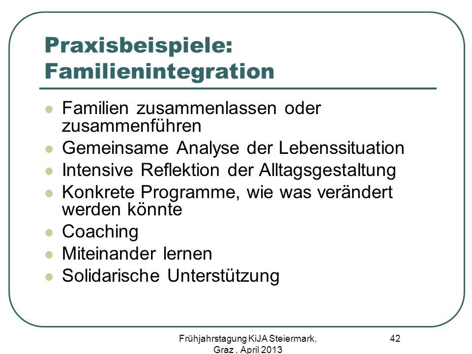 Praxisbeispiele: Familienintegration Familien zusammenlassen oder zusammenführen Gemeinsame Analyse der Lebenssituation Intensive Reflektion der Allta