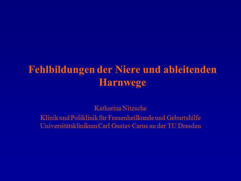 Katharina Nitzsche Klinik und Poliklinik für Frauenheilkunde und Geburtshilfe Universitätsklinikum Carl Gustav Carus an der TU Dresden Fehlbildungen d