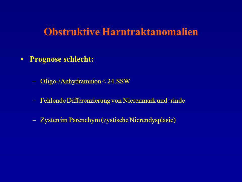 Obstruktive Harntraktanomalien Prognose schlecht: –Oligo-/Anhydramnion < 24.SSW –Fehlende Differenzierung von Nierenmark und -rinde –Zysten im Parench