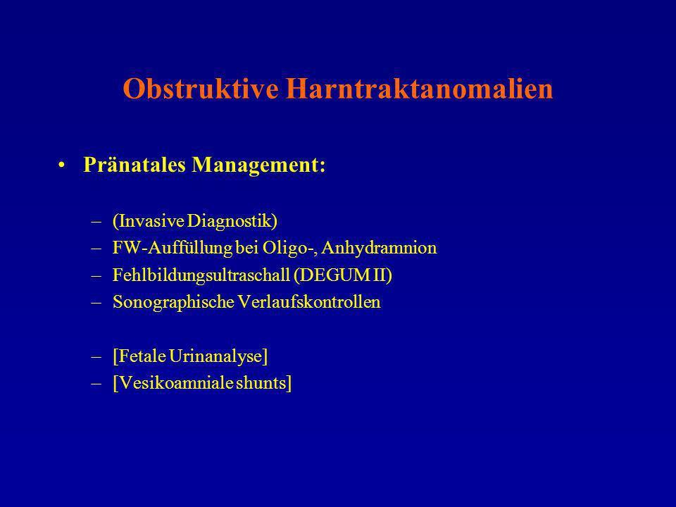 Obstruktive Harntraktanomalien Pränatales Management: –(Invasive Diagnostik) –FW-Auffüllung bei Oligo-, Anhydramnion –Fehlbildungsultraschall (DEGUM I