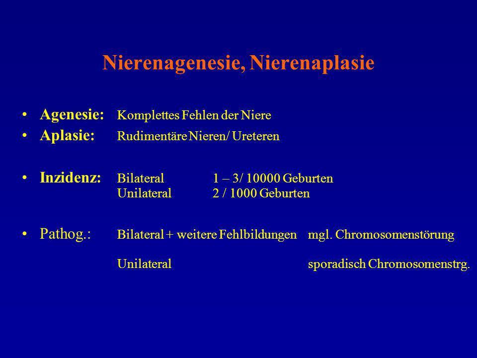 Nierenagenesie, Nierenaplasie Agenesie: Komplettes Fehlen der Niere Aplasie: Rudimentäre Nieren/ Ureteren Inzidenz: Bilateral 1 – 3/ 10000 Geburten Un