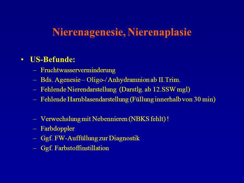 Nierenagenesie, Nierenaplasie US-Befunde: –Fruchtwasserverminderung –Bds. Agenesie – Oligo-/ Anhydramnion ab II.Trim. –Fehlende Nierendarstellung (Dar