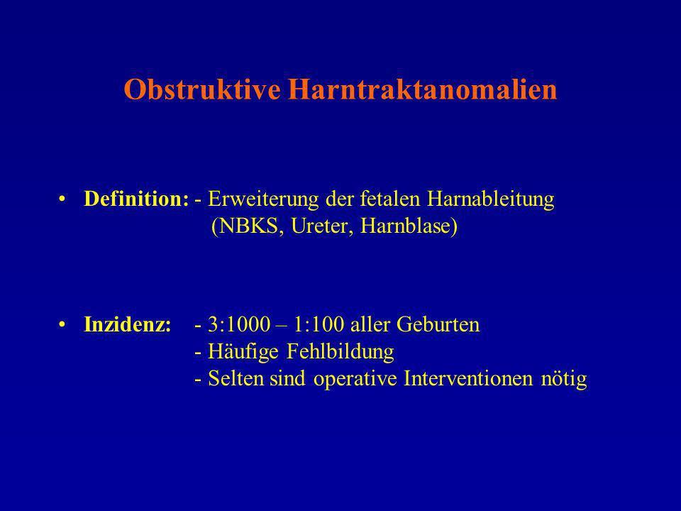 Obstruktive Harntraktanomalien Lokalisation: Subpelvine Ureterobstruktion – häufig, Harnstau Megaureter – Läsion/Dysfunktion am Übergang Ureter/Hb Ureterozele – zyst.