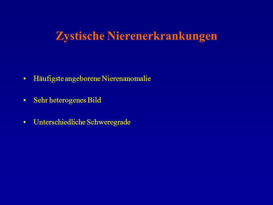 Zystische Nierenerkrankungen Häufigste angeborene Nierenanomalie Sehr heterogenes Bild Unterschiedliche Schweregrade