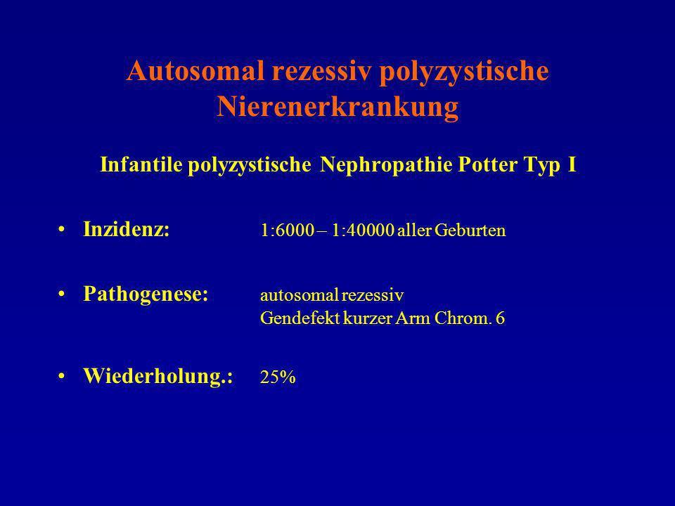Autosomal rezessiv polyzystische Nierenerkrankung Infantile polyzystische Nephropathie Potter Typ I Inzidenz: 1:6000 – 1:40000 aller Geburten Pathogen
