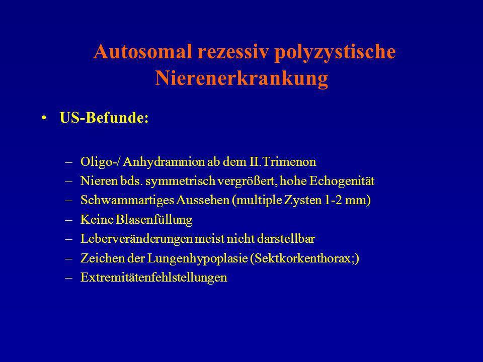 Autosomal rezessiv polyzystische Nierenerkrankung US-Befunde: –Oligo-/ Anhydramnion ab dem II.Trimenon –Nieren bds. symmetrisch vergrößert, hohe Echog