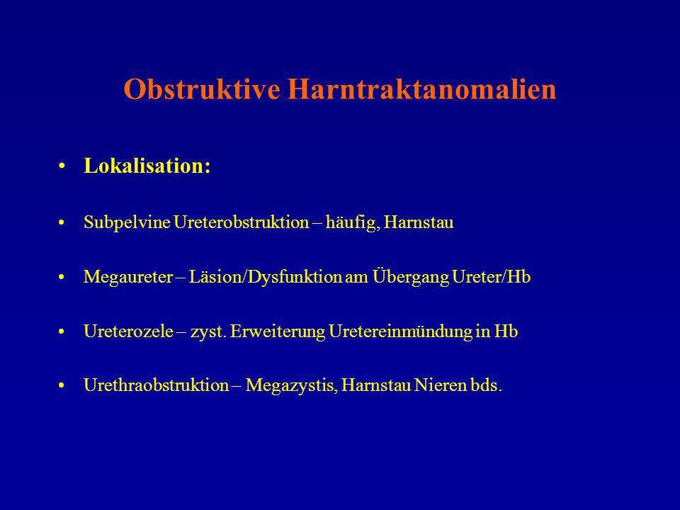 Multizystische dysplastische Nierenfehlbildung US – Befunde: –Häufig unilaterale, seltener bilaterale Ausprägung –Komplette oder segmentale Ausprägung –Niere vergrößert, multiple, polymorphe, nicht kommunizierende große Zysten (Potter II A) –Niere verkleinert, kleine Zysten (Potter II B) –Nierenbecken nicht darstellbar –Fehlende Blasenfüllung und Oligo-/Anhydramnion bei bilateraler Form