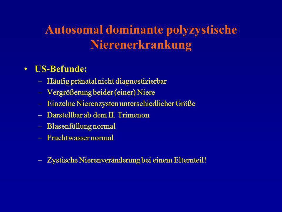 Autosomal dominante polyzystische Nierenerkrankung US-Befunde: –Häufig pränatal nicht diagnostizierbar –Vergrößerung beider (einer) Niere –Einzelne Ni