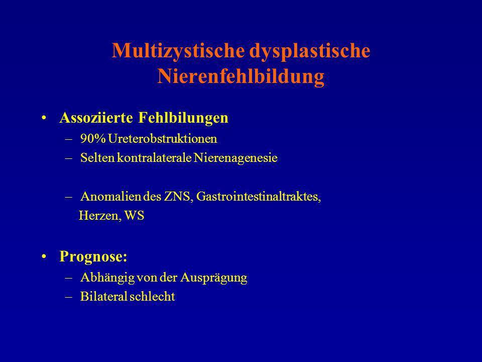 Multizystische dysplastische Nierenfehlbildung Assoziierte Fehlbilungen –90% Ureterobstruktionen –Selten kontralaterale Nierenagenesie –Anomalien des