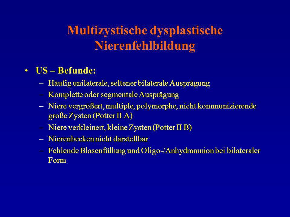Multizystische dysplastische Nierenfehlbildung US – Befunde: –Häufig unilaterale, seltener bilaterale Ausprägung –Komplette oder segmentale Ausprägung