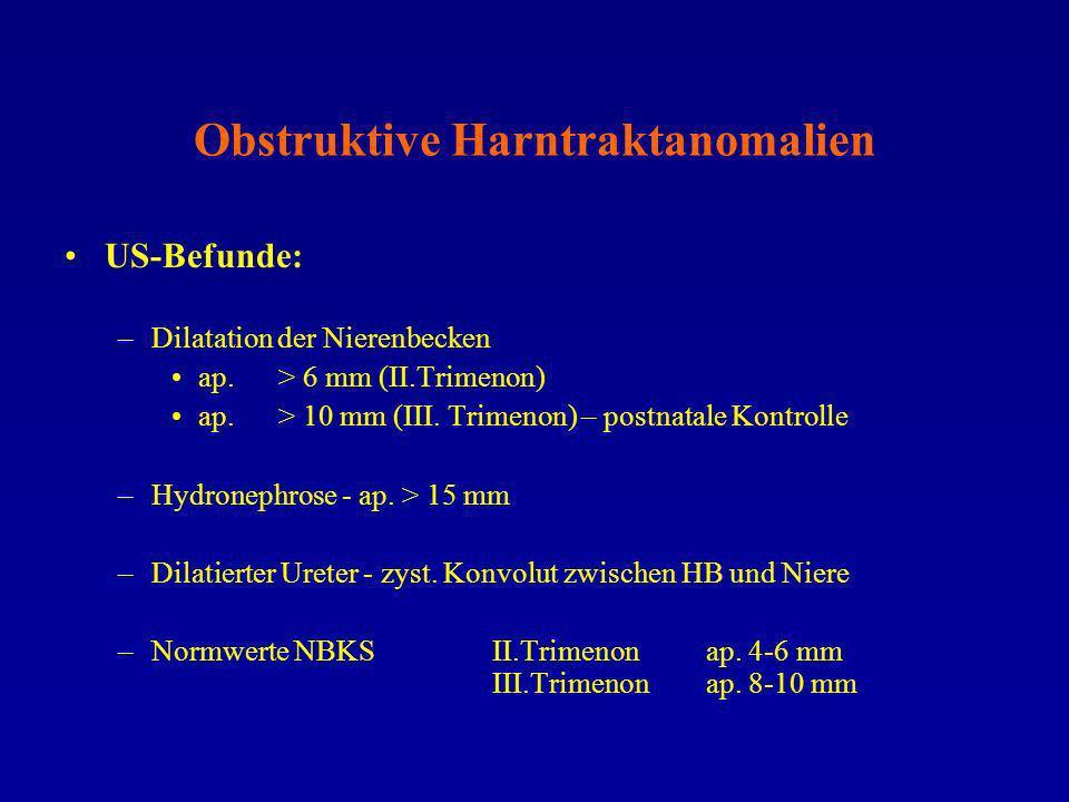 Obstruktive Harntraktanomalien US-Befunde: –Dilatation der Nierenbecken ap. > 6 mm (II.Trimenon) ap.> 10 mm (III. Trimenon) – postnatale Kontrolle –Hy