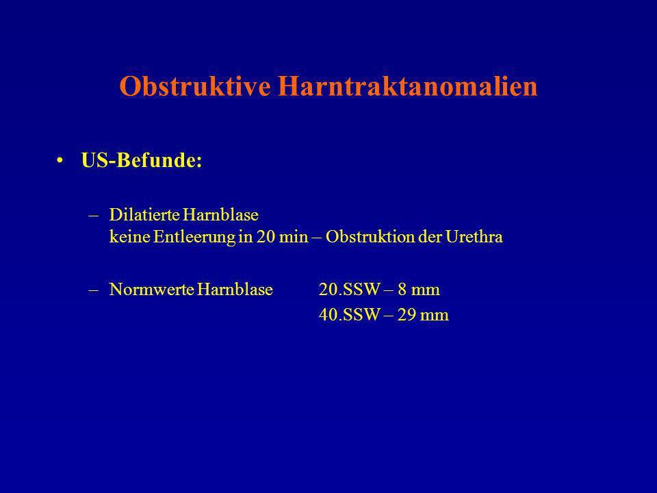 Obstruktive Harntraktanomalien US-Befunde: –Dilatierte Harnblase keine Entleerung in 20 min – Obstruktion der Urethra –Normwerte Harnblase20.SSW – 8 m