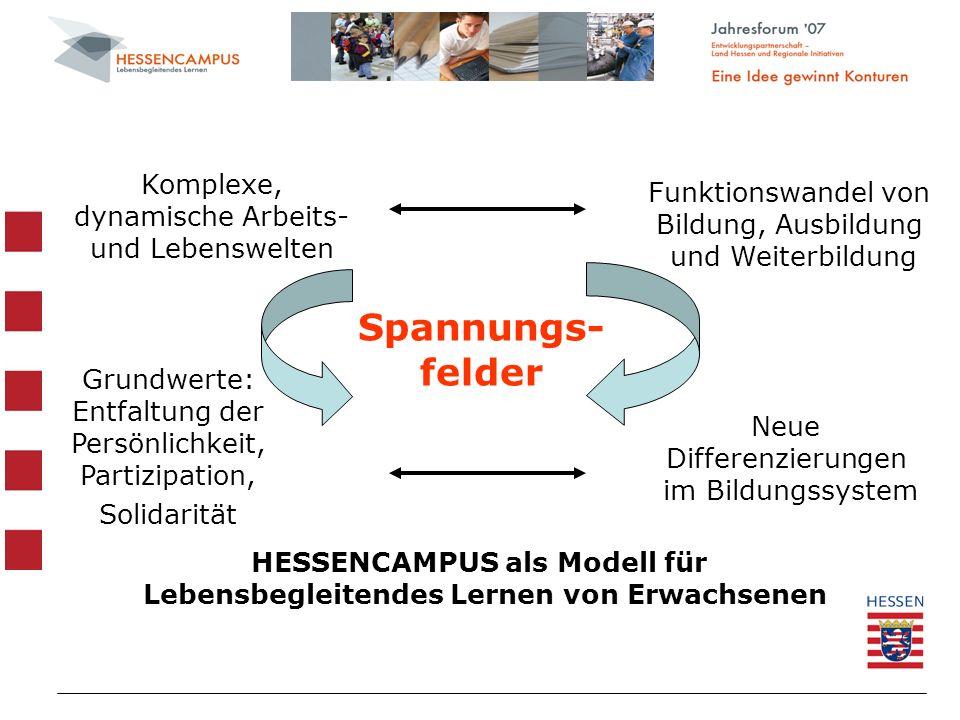 Spannungs- felder Komplexe, dynamische Arbeits- und Lebenswelten Funktionswandel von Bildung, Ausbildung und Weiterbildung Grundwerte: Entfaltung der