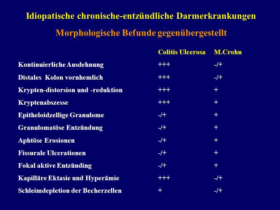 Idiopatische chronische-entzündliche Darmerkrankungen Morphologische Befunde gegenübergestellt Colitis UlcerosaM.Crohn Kontinuierliche Ausdehnung+++-/