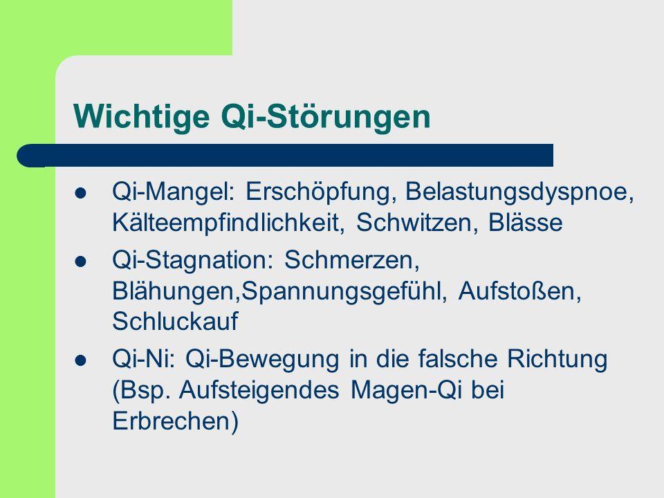 Wichtige Qi-Störungen Qi-Mangel: Erschöpfung, Belastungsdyspnoe, Kälteempfindlichkeit, Schwitzen, Blässe Qi-Stagnation: Schmerzen, Blähungen,Spannungs