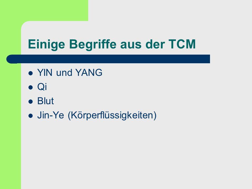 Einige Begriffe aus der TCM YIN und YANG Qi Blut Jin-Ye (Körperflüssigkeiten)