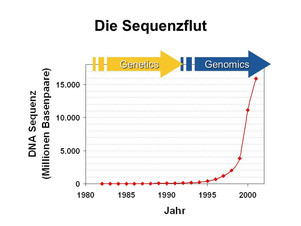 Die Sequenzflut GenomicsGenetics