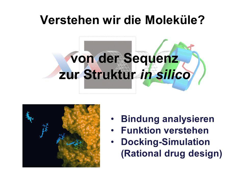 Verstehen wir die Moleküle? Bindung analysieren Funktion verstehen Docking-Simulation (Rational drug design) von der Sequenz zur Struktur in silico