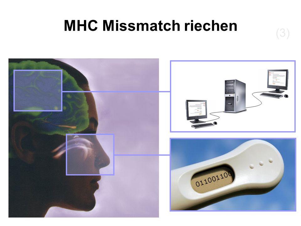 (3) MHC Missmatch riechen