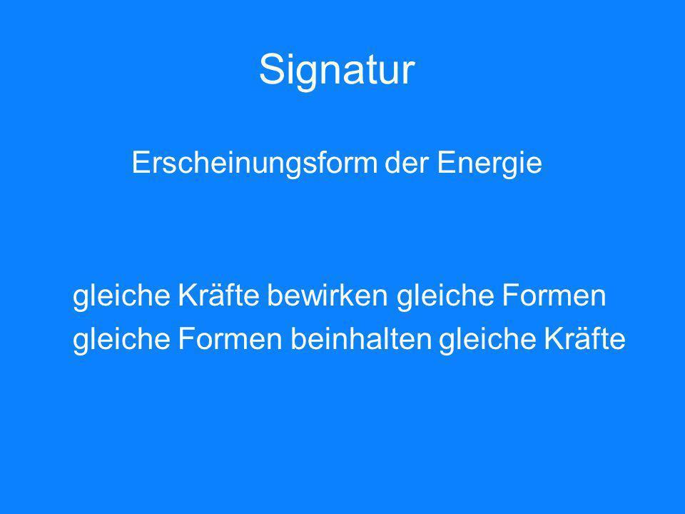 Signatur Erscheinungsform der Energie gleiche Kräfte bewirken gleiche Formen gleiche Formen beinhalten gleiche Kräfte