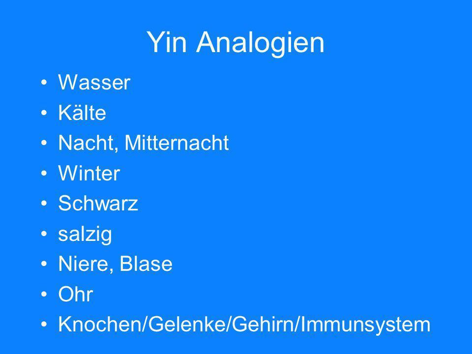 Yin Analogien Wasser Kälte Nacht, Mitternacht Winter Schwarz salzig Niere, Blase Ohr Knochen/Gelenke/Gehirn/Immunsystem