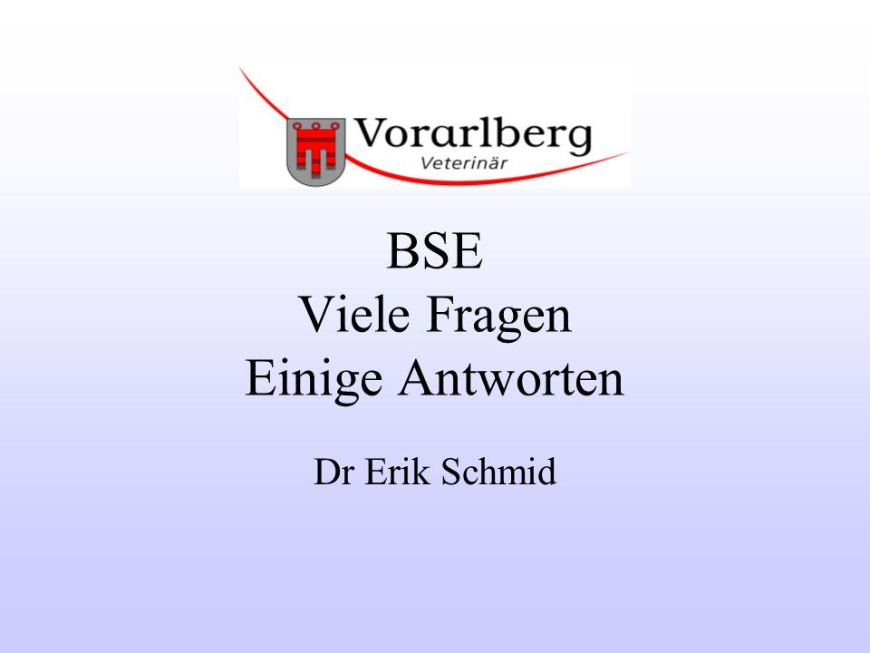 E.Schmid: BSE; Viele Fragen, einige Antworten 2 Inhaltsangabe Einleitung Was heißt BSE .